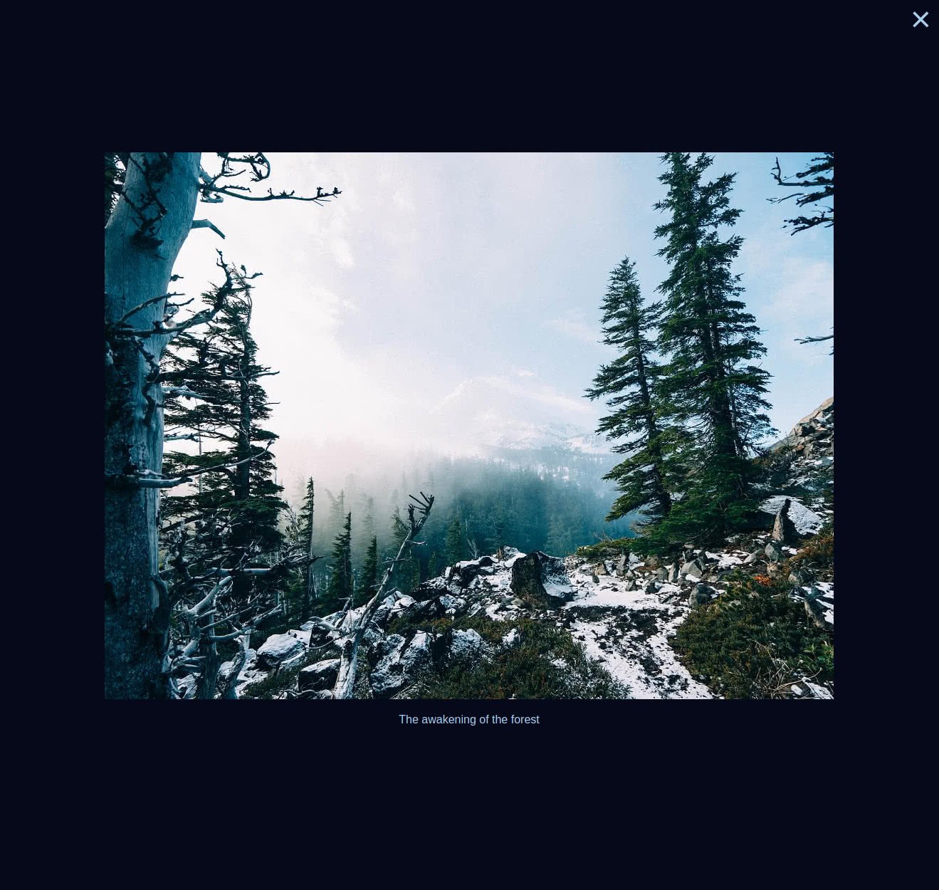 Blue - Image View - Desktop