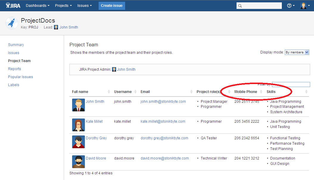 User custom fields displayed on the Project Team tab of the project.